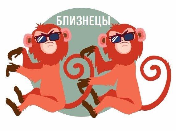 Надписью девушка, близнецы прикольные картинки знак зодиака