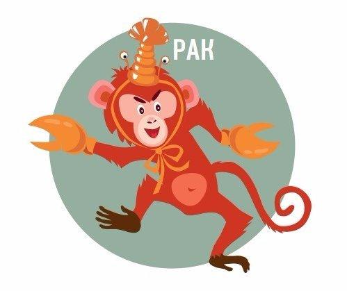Все дело в том, что обезьяна — это огненный знак, а близнец — воздушный.
