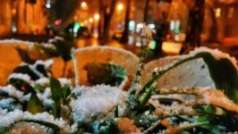 Первый снег в Одессе