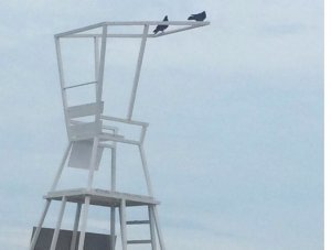 Пустой спасательный пост на пляже в Аркадии