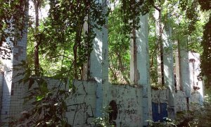 Упадок Дюковского парка