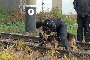 Убийство в Белгород-Днестровском