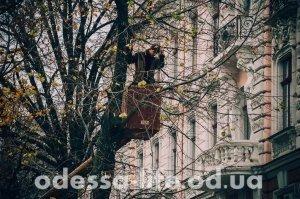 Дерибасовскую готовят к зиме