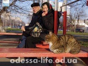 Николай Григорьевич с супругой едут на «Привоз». А на переднем плане местный житель – ни куда не едет, его и здесь не плохо кормят.