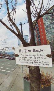 """Дерево Дуглас"" в Ванкувере (Канада)"