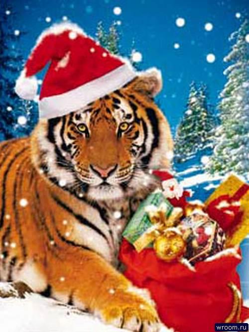 Картинки нового года год тигра