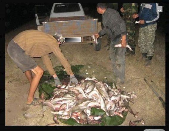 браконьеры задержали ловля рыба