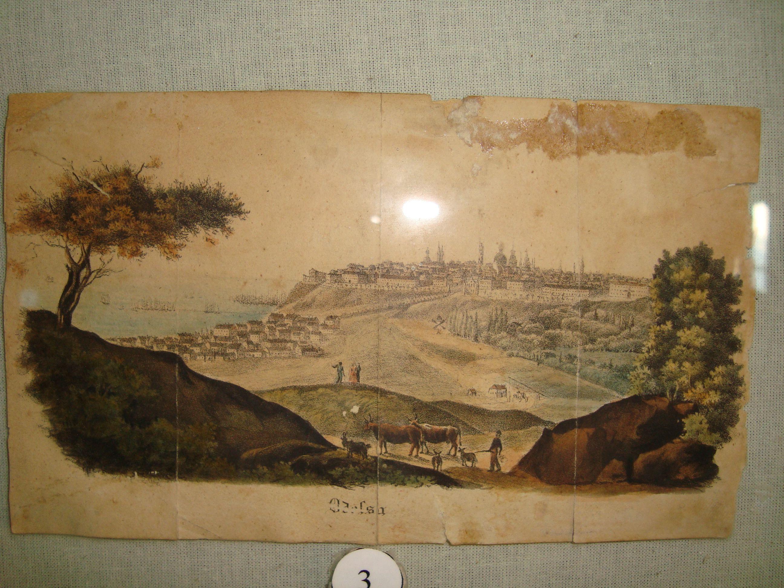 Вид с Жеваховой горы на город
