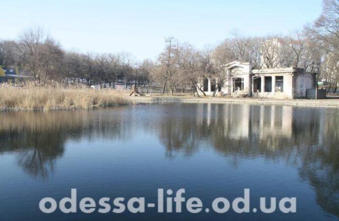 В мэрии Одессы намерены привести в порядок Дюковский парк (видео)