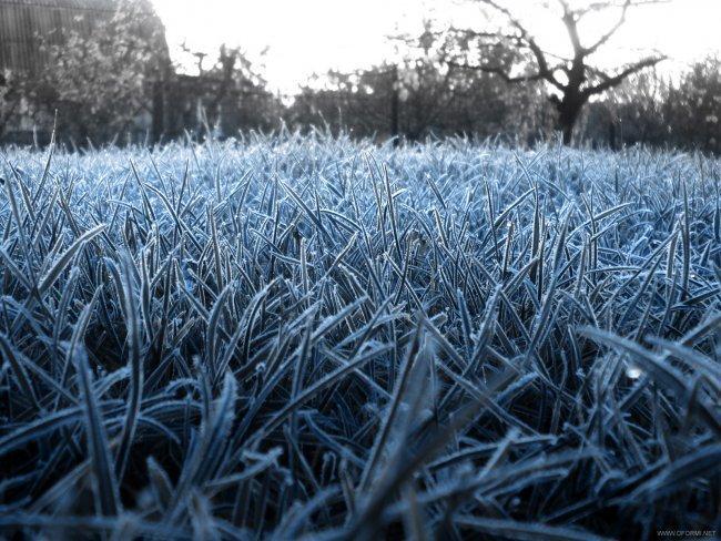 Одесситов ждут заморозки