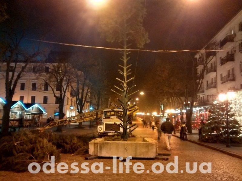 На центральной улице Одессы ночью устанавливали елку (ФОТО)