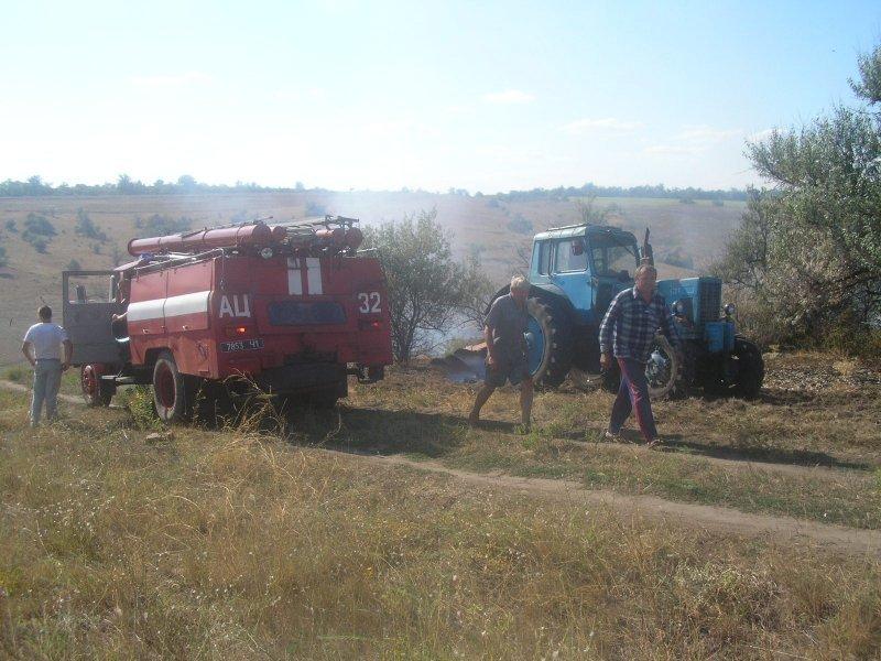 В Одесской области едва не загорелся лес (ФОТО)