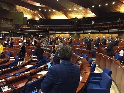 Весь зал ПАСЕ встал в поддержку Савченко (ФОТО)