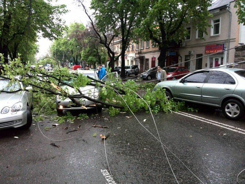 Непогода в Одессе: падают деревья и проваливается асфальт (ФОТО; ОБНОВЛЕНО)