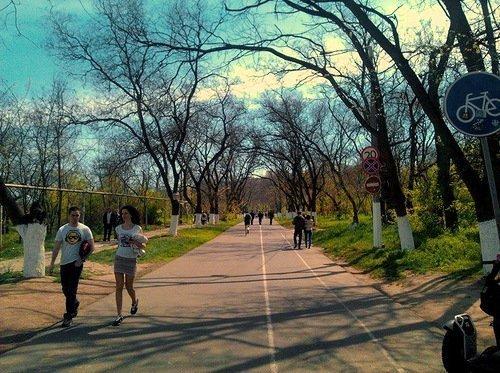 В эти выходные в Одессе будет тепло