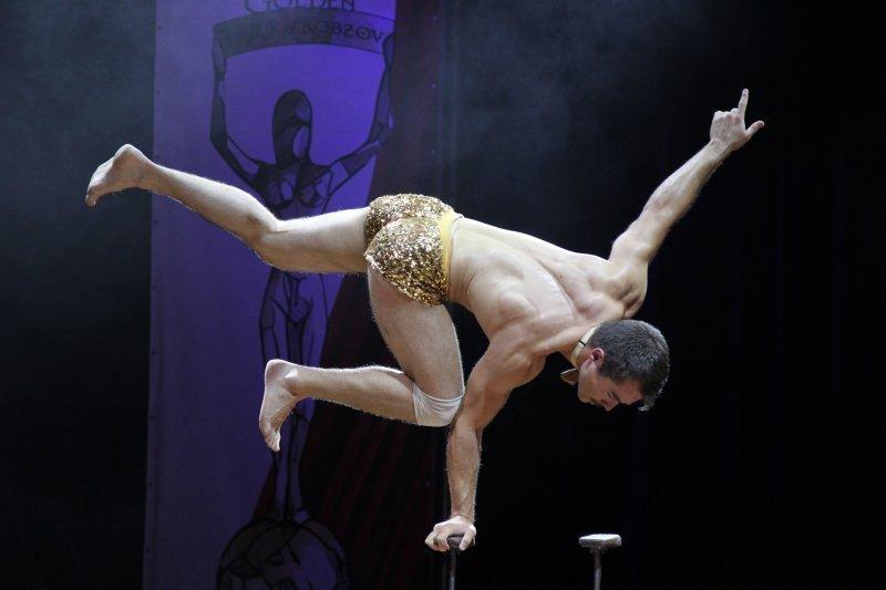 Три истории из цирка «Кобзов»