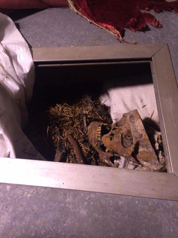 В Одесской области разграбили знаменитый мавзолей (ФОТО)