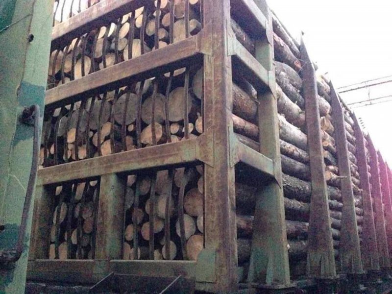 В Одесской области контрабандистам не дали вывезти 56 вагонов древесины