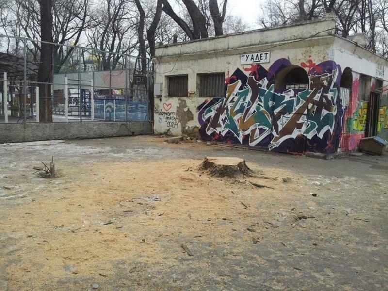 В сквере в центре Одессы срубили деревья для строительства детского центра