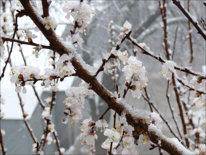 Прогноз погоды в Одессе и Одесской области на 10 февраля