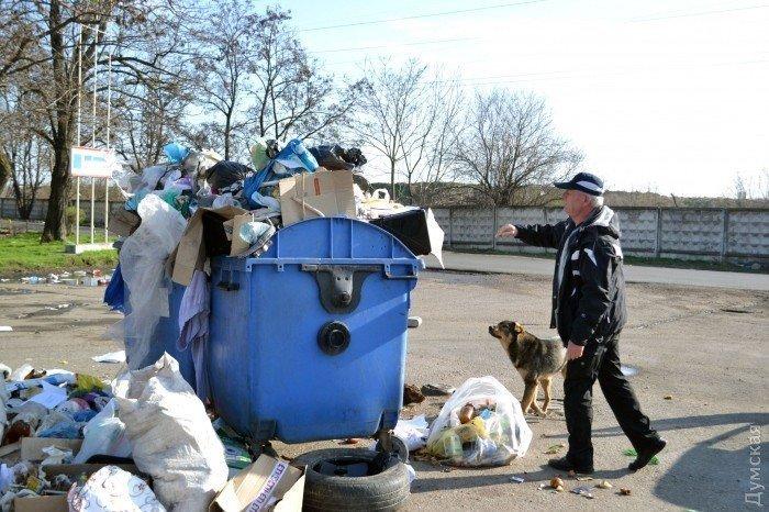 Как Одесса с головой тонет в своем собственном мусоре (ФОТО)