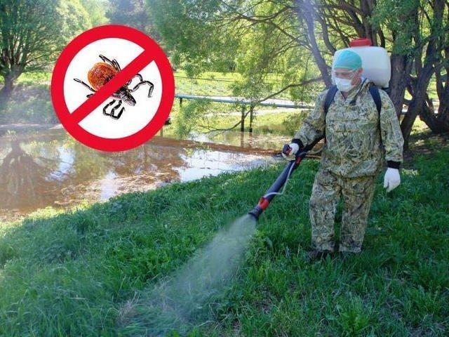 Парки Измаила станут опасны для посетителей