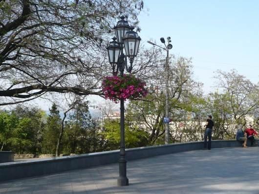 Одессу ожидает вертикальное озеленение