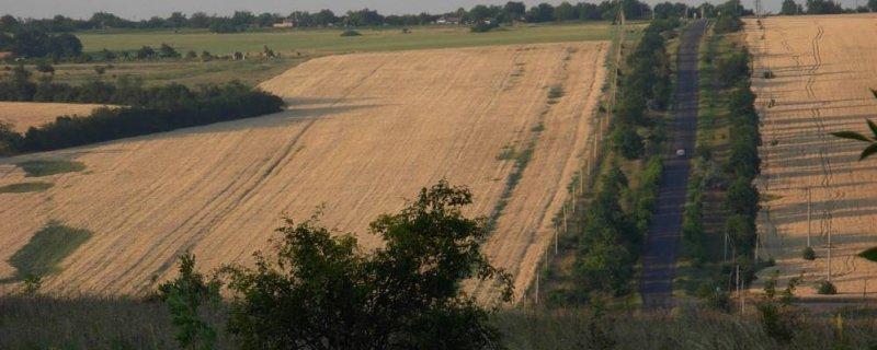 Изолированные на границе с Приднестровьем села Одесской области получат новую дорогу (ВИДЕО)