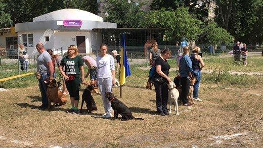 У собачников с Котовского появился повод для радости (ФОТО)
