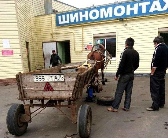 Лошадь с повозкой в Одессе привезли на шиномонтаж (ФОТО)