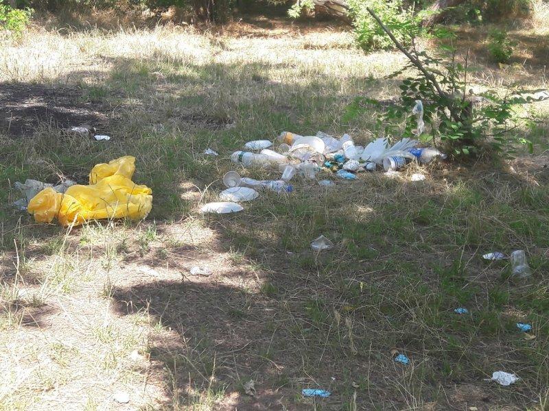 Парковую зону в Лузановке опять завалили мусором (ФОТО)
