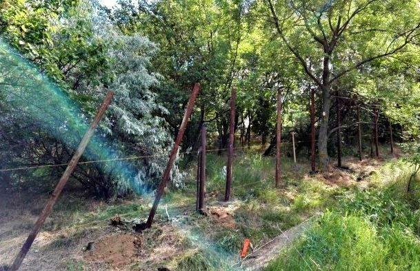 Тёмное строительство над Трассой здоровья: вновь уничтожают деревья (ФОТО)