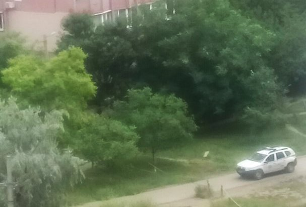 В одесском парке ловили наркоманов (ФОТО)