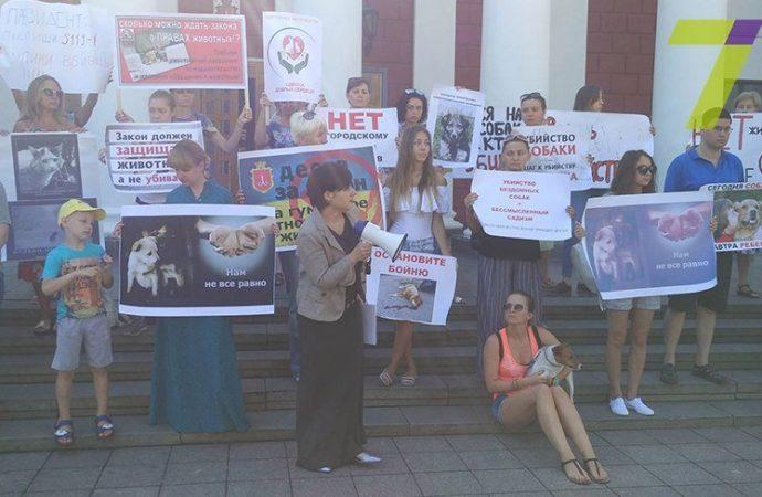 Бунт под Одесским горсоветом: активисты защищают животных (ФОТО)