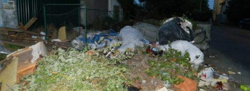 Частный сектор на Таирова завалили мусором. Местные жители в отчаянии (ФОТО)