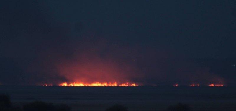 Нижнеднестровский национальный природный парк горит в 8 местах (ФОТО)