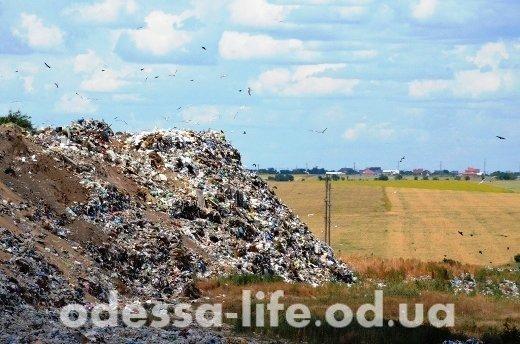 В Одесской области более 100 мусорных свалок — незаконны