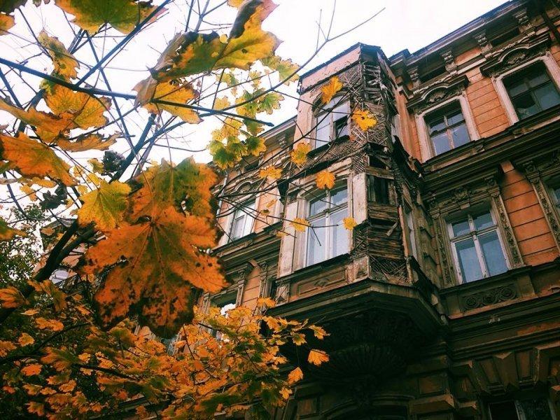 Осень в Одессе становится всё холоднее