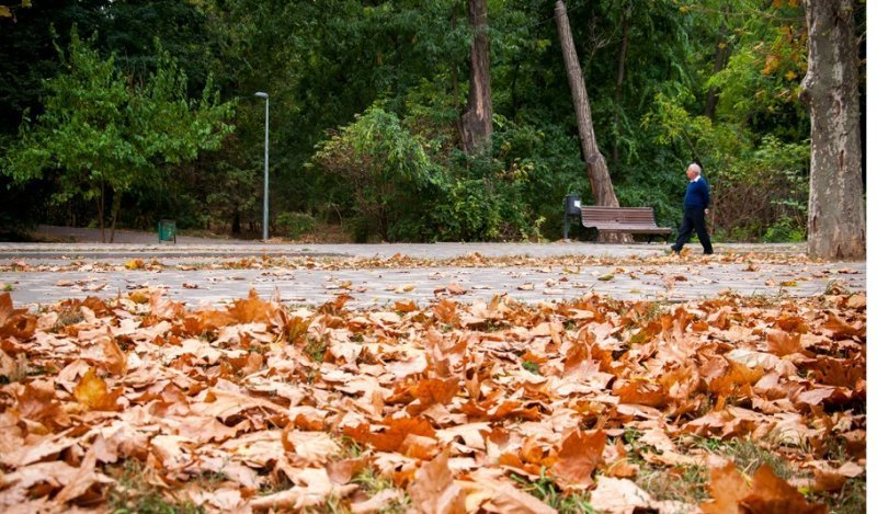 Что принесёт одесситам погода 7 ноября?