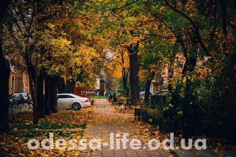 Яркие краски ноябрьской Одессы (ФОТО)