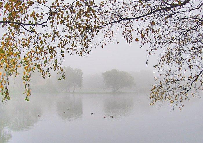 В субботу и воскресенье в Одессе будет сыро и туманно