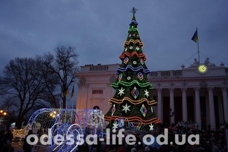Ёлочка – гори! В Одессе зажгли огни на главной городской ёлке (ФОТО)