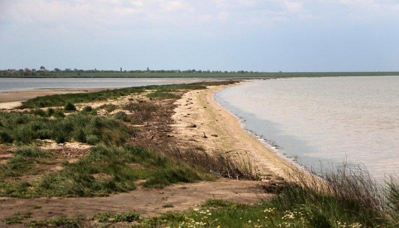 Эколог Иван Русев – человек, с которым нельзя договориться (ВИДЕО)