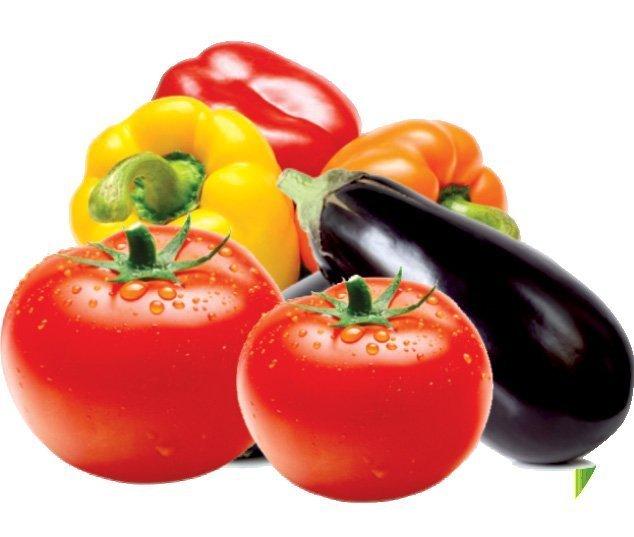 Увеличить урожайность томатов, перца и баклажан на 50% реально с препаратом ПАСЛИНИЙ