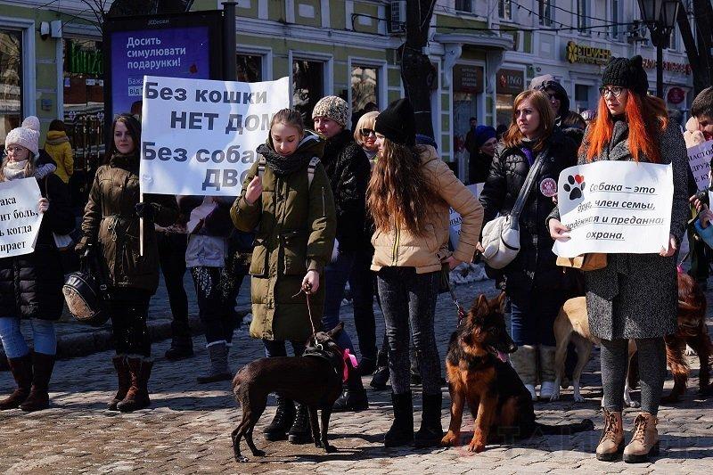 Защитники животных вместе с питомцами прошли маршем по центральным улицам (ФОТО)