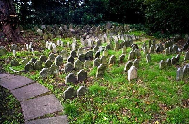 Похоронная реформа: чьи уши торчат из «биозахоронений»?