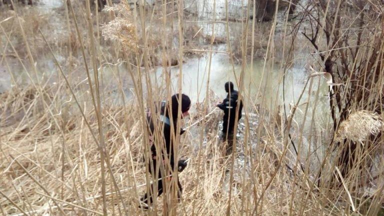 За последние несколько дней в Одесской области нашли и обезвредили три мины (ФОТО)