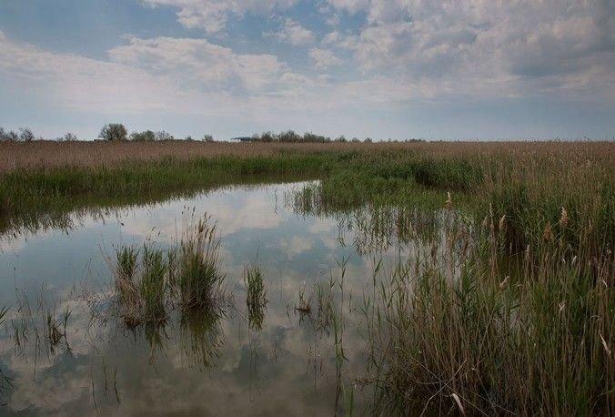 В Одесской области появится новый остров