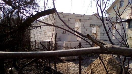 В Одессе зацветает сорняк-убийца