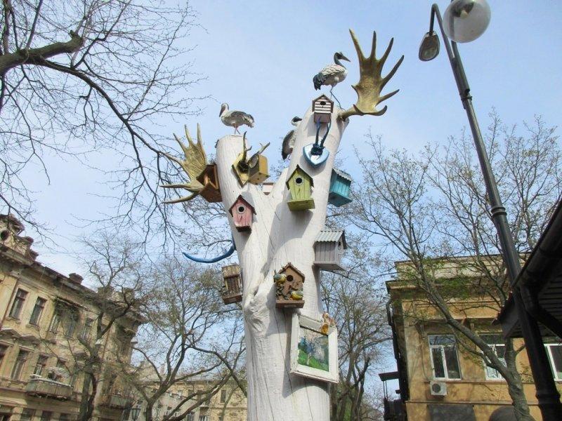 Возле знаменитого рынка «выросло» рогатое дерево